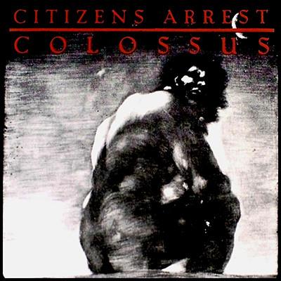CITIZENS ARREST - Colossus: The Discography 2 x LP