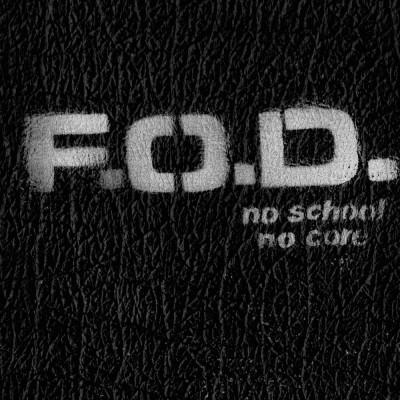 FLAG OF DEMOCRACY - No School, No Core. LP (Puke Color)