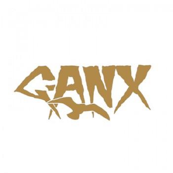 G-ANX - Flashbacks 4 x LP Box