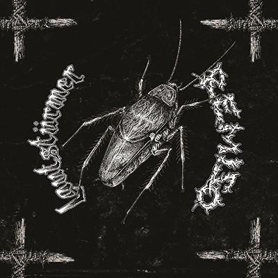 LAUTSTÜRMER / REMISO - Split LP