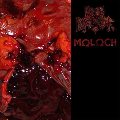 METH DRINKER / MOLOCH - Split LP