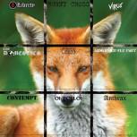 ARMOURED FLU UNIT - Same EP (Hunt Saboteurs Association Benefit Series # 6)