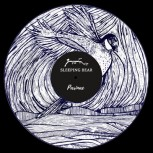 SLEEPING BEAR - Parinae LP
